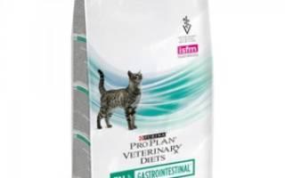 Корм для кошек для лечения жкт