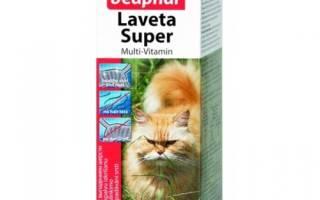 Выпадение шерсти у кошки причины и лечение