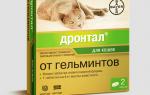 Паразиты у кошек лечение препараты