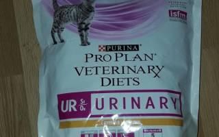 Пурина мочекаменной болезни для кошек